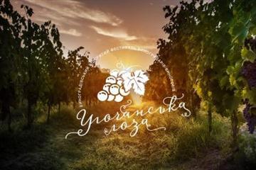 На Виноградівщині відбудеться фестиваль виноградарів-виноробів