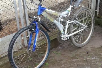 На Виноградівщині вкрали два велосипеди