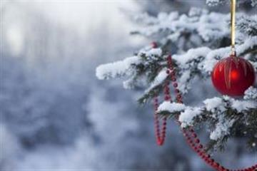 Яким буде Новий рік на Закарпатті: теплим чи морозним?